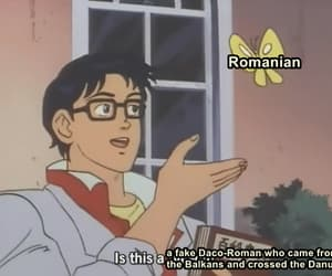 funny, meme, and românâ image