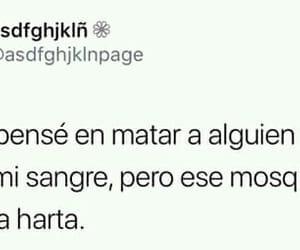 amor, mosquito, and matar image