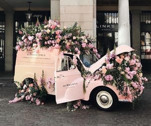 aesthetic, cars, and flowers image