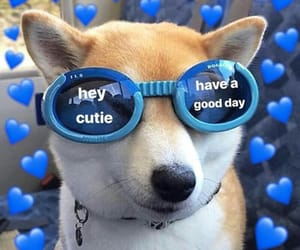 blue, dog, and hearts image
