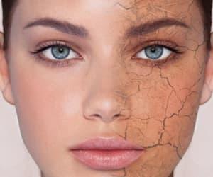 skincare, droge huid, and gelaatsverzorging image