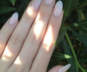gel, wellnails, and nails image