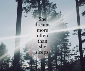 Dream, forest, and life image
