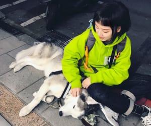 asia, asian girl, and dog image