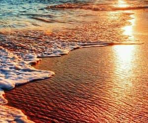beach, summer feeling, and beautiful image