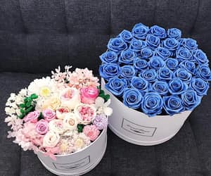 beautiful, blue, and bouquet image