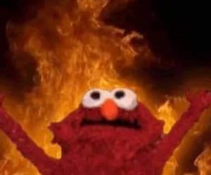 elmo, funny, and fire image