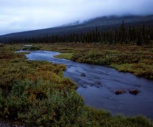 120, alaska, and analog image