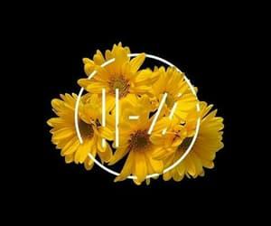 yellow, twenty one pilots, and flowers image