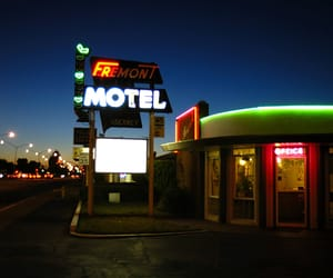neon signs, photography, and signage image