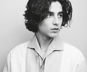 timothee chalamet and face image
