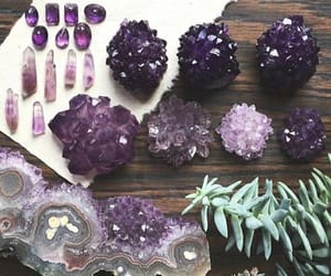 crystals, plant, and shiny image