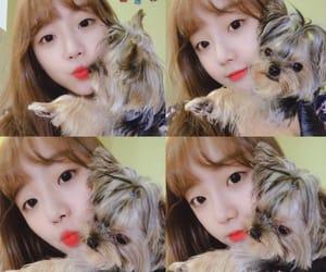 bella, hyeseong, and yukyung image