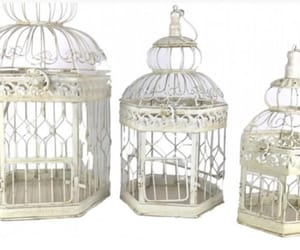 birdcage, decor, and rustic image