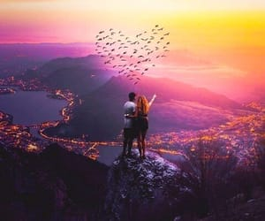 birds, morning, and love image