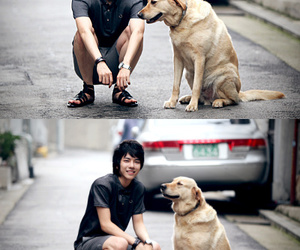 asian, dogs, and boy image