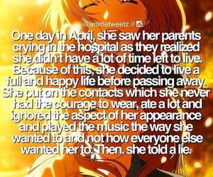 your lie in april and anime image