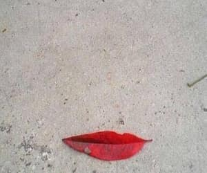 leaf, lips, and optical illusion image