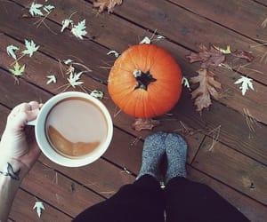 Autumn *o*