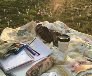 aesthetic and study image