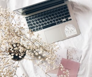 aesthetic, pink, and floral image