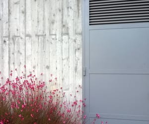 door, entrance, and flowers image