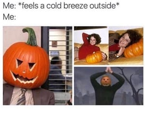 autumn, funny, and so true image
