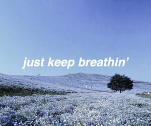 blue, calm, and header image