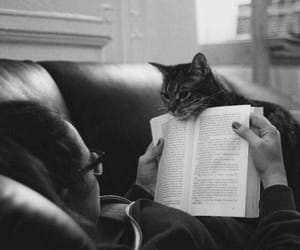 books, cats, and reading image