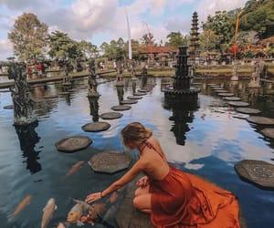 travel, dress, and fish image