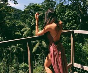 adventure, wild, and girl image