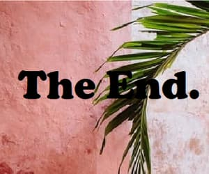 end, wall, and pink wall image