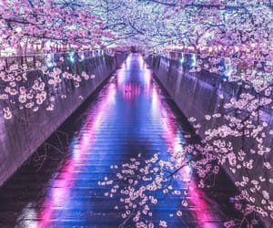 aesthetic, japan, and blue image