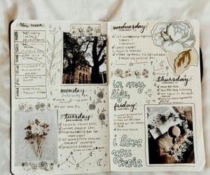 journal, bullet journal, and book image