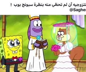arab, arabic, and سبونج بوب image