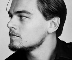 leonardo dicaprio, actor, and Leo image