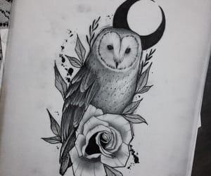 animal, coruja, and tattoo image