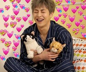 hearts, tags, and chanyeol baekhyun image