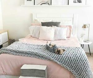 cama, cuadros, and dog image