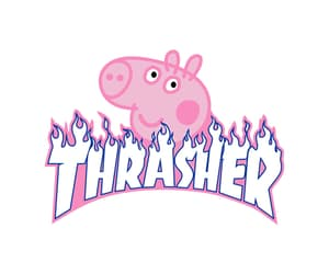 pig, thrasher, and fashion image