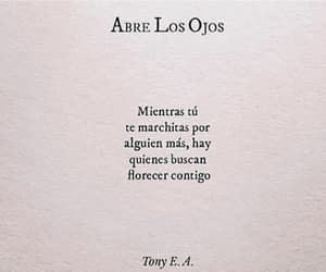 amor, books, and letras image