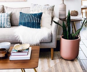 couch, home, and interior design image