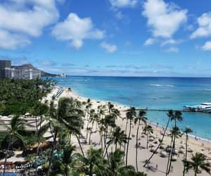beach, palmtree, and clouds image