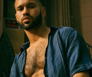 artist, beard, and hairy chest image