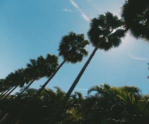 beach, sun, and california image