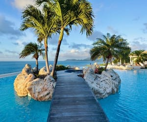 paradise and pool image