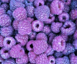 berries, pink, and raspberry image