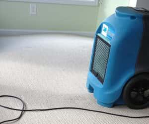 carpet flood repair, flood repair perth, and flood repair joondalup image