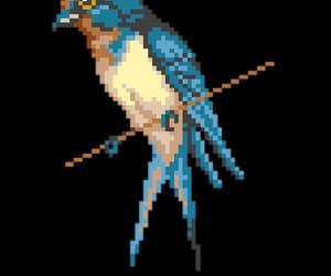 pixel, png, and swallow image