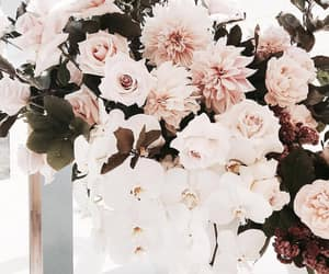 aesthetic, flowers, and pale image
